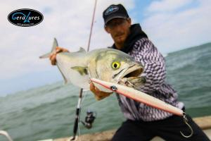 geralures-agulla-needle-pesca-fishing-fish-peix-13