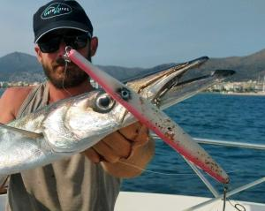 geralures-agulla-needle-pesca-fishing-fish-peix-19